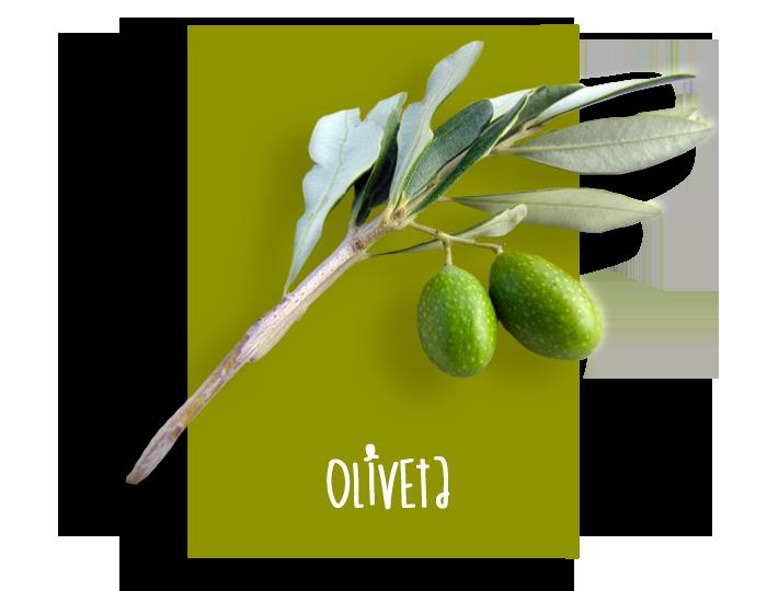 01_oliveta