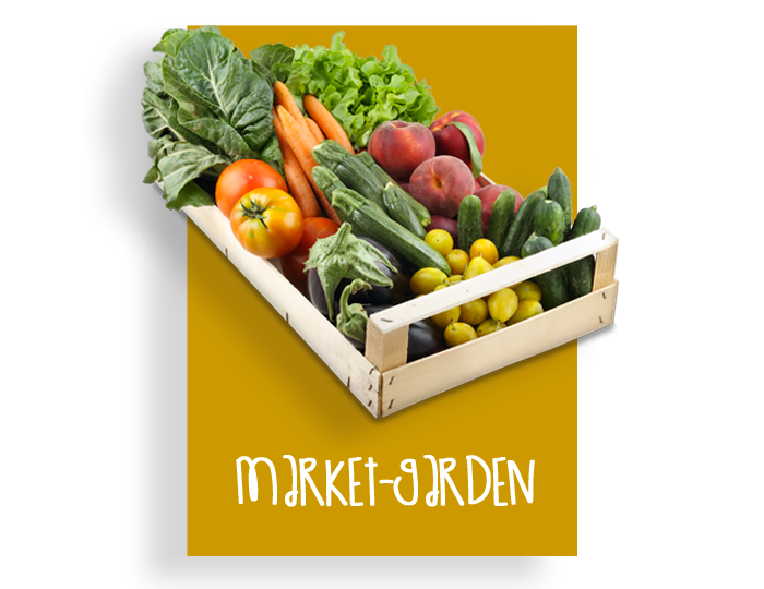 03_marketgarden